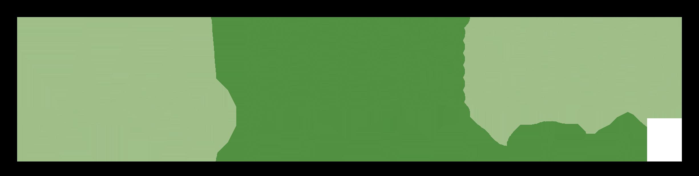 Pine Cove Pulse