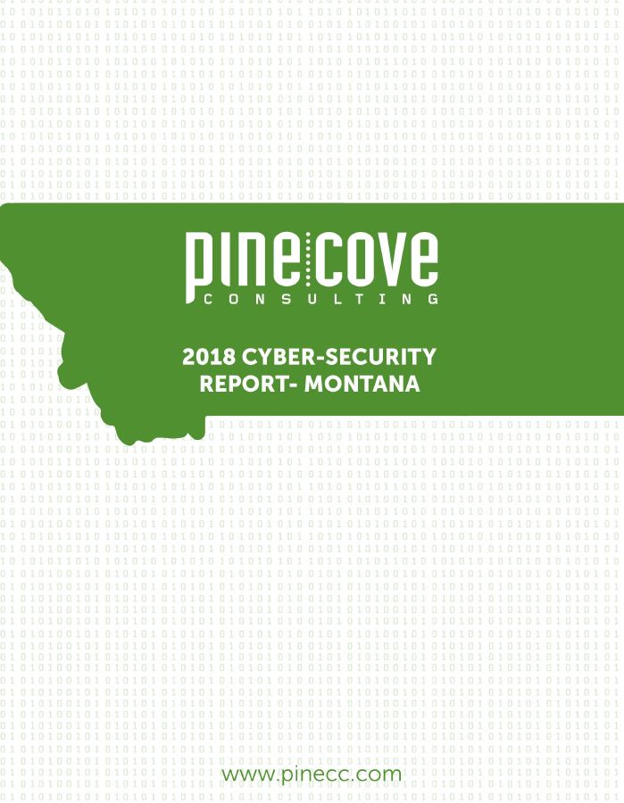 2018 Montana Cyber-Security Report